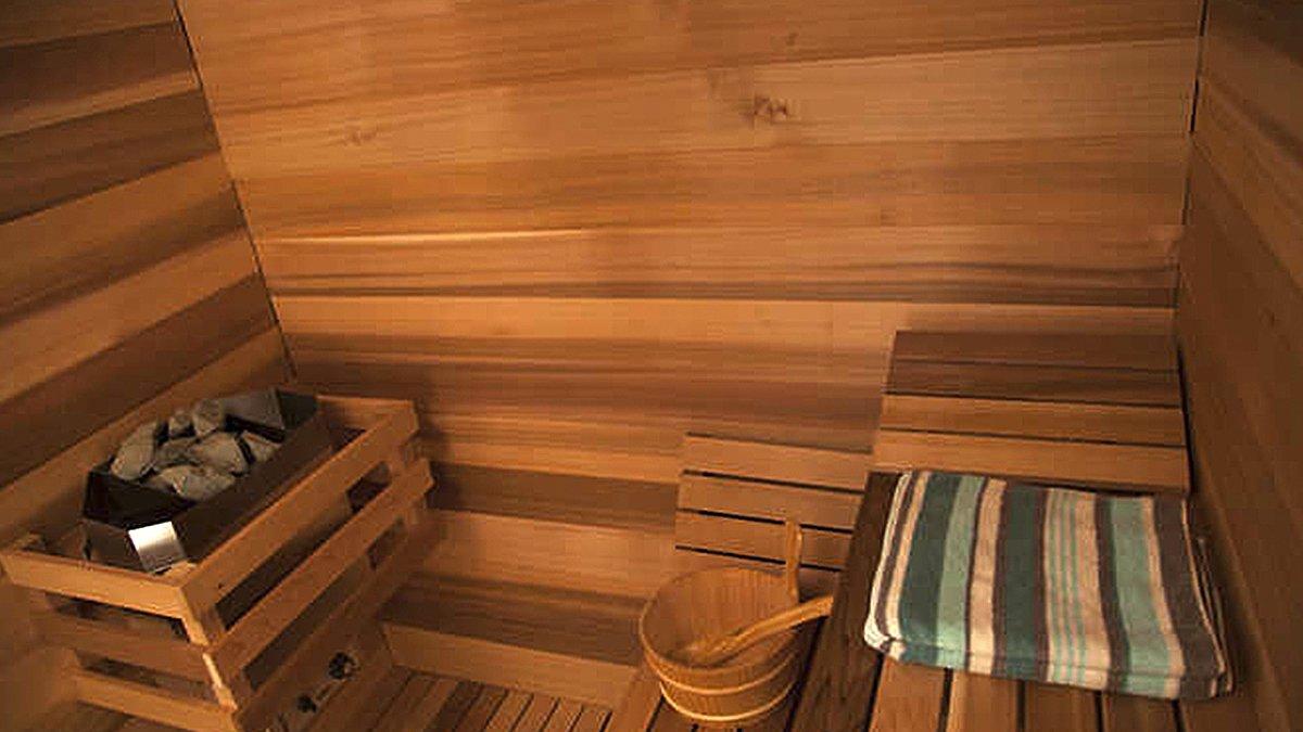 Construire Un Sauna Finlandais saunas d'extérieur - intervap europa